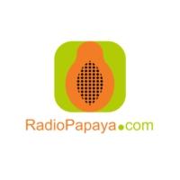 Logo of radio station Radio Papaya