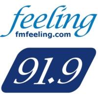 Logo of radio station Feeling FM 91.9