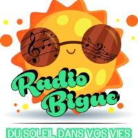 Logo of radio station radio bigue