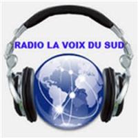 Logo de la radio Radio La Voix du Sud Internationale