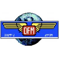 Logo of radio station DFM RTV INT