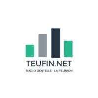 Logo of radio station Radio TeuFin