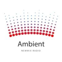 Logo de la radio Ambient NewMix Radio
