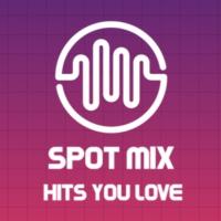 Logo of radio station Spot Mix