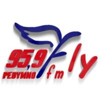 Logo de la radio Fly Radio 95.9
