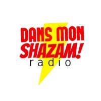 Logo de la radio DansMonShazam radio