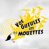 Logo de la radio Vos gueules les mouettes