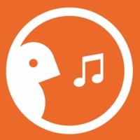 Logo de la radio Birdsong fm