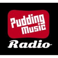 Logo de la radio Pudding Music Radio