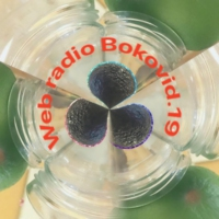 Logo of radio station Bokovid.19