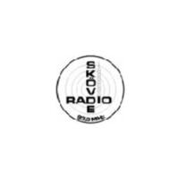 Logo of radio station Radio Skövde 90.4