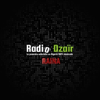 Logo of radio station Radio Dzaïr - Raïna
