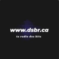 Logo of radio station DsBr