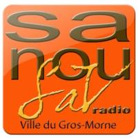 Logo of radio station SanouSAV Radio