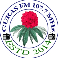 Logo of radio station Guras FM