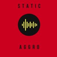 Logo de la radio Static: Aggro