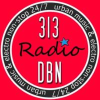 Logo de la radio 313 DBN Radio