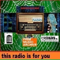 Logo of radio station Sumersouls RADIO