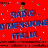 Logo of radio station Radio Dimensione Italia
