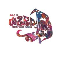 Logo of radio station WZRD Chicago 88.3 FM