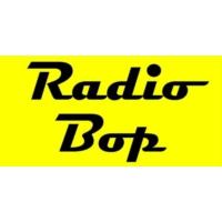 Logo of radio station Radio Bop