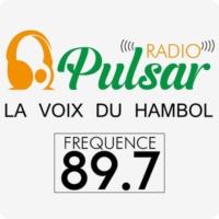 Logo of radio station Radio Pulsar Katiola