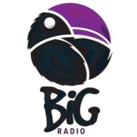 Logo of radio station BiG Radio 3