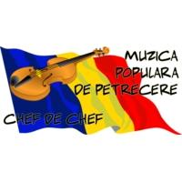Logo of radio station Radio Muzica Petrecere