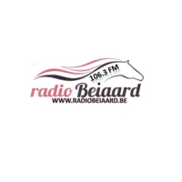 Logo of radio station Radio Beiaard