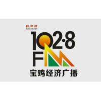 Logo de la radio 宝鸡经济广播 FM102.8