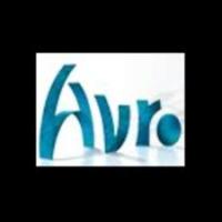Logo de la radio AVRO Steenen Tijdperk Fifties
