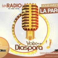 Logo de la radio La Voix de la Diaspora Radio