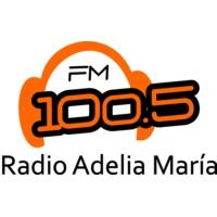 Logo of radio station FM 100.5
