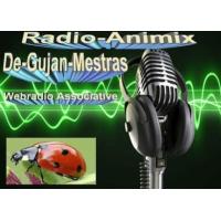 Logo de la radio Radio-Animix
