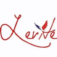 Logo of radio station Levite Radio