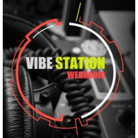 Logo of radio station Vibe Station