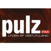 Logo de la radio Pulz FM
