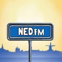 Logo de la radio Ned.fm