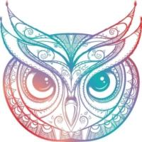 Logo of radio station Owl Radio