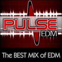 Logo de la radio PulseEDM