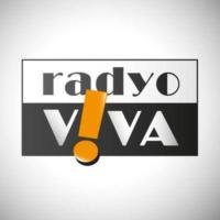 Logo de la radio FM Radio Viva 90.1