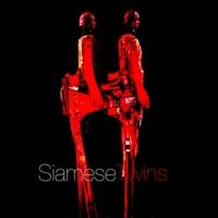 Logo of radio station SiameseTwins