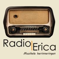 Logo of radio station Radio Erica