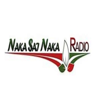 Logo of radio station Nakasainaka Radio