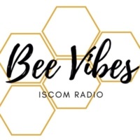 Logo of radio station Bee Vibes