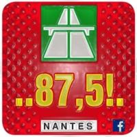 Logo de la radio 875