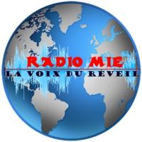 Logo of radio station Radio MIE