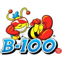 Logo of radio station CKBZ-FM B-100