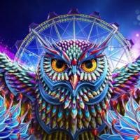 Logo of radio station Night Owl Radio