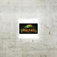 Logo of radio station Radio Malpais 95.9 FM